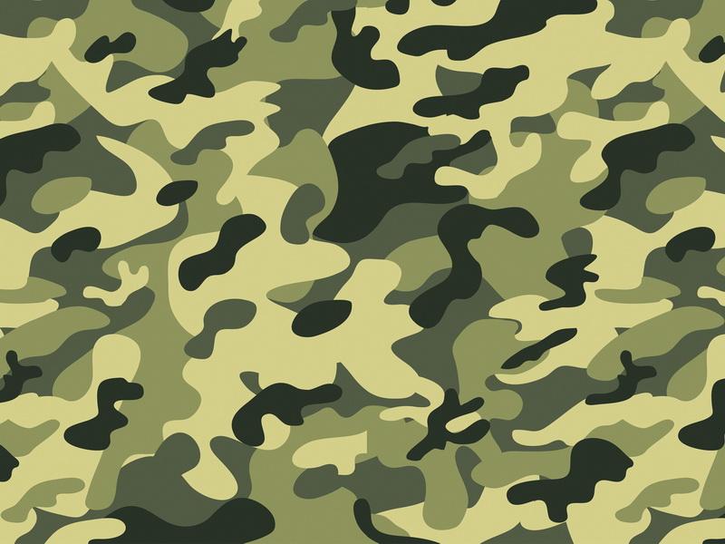 Фотосессия девушек в военной форме и цветах 25 фотография